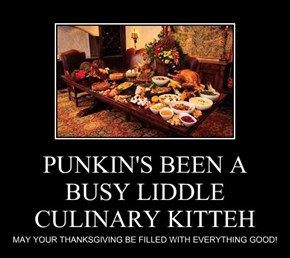 PUNKIN'S BEEN A BUSY LIDDLE CULINARY KITTEH