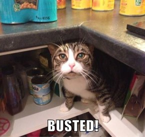 BUSTED!