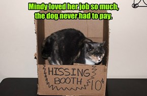 Mindy loved her job so much,  the dog never had to pay.