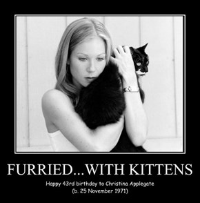 FURRIED...WITH KITTENS