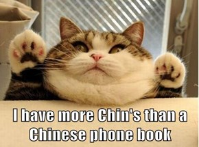 I have more Chin's than a Chinese phone book