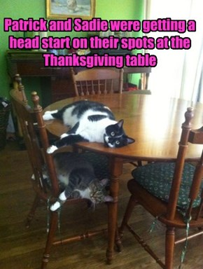 Patrick and Sadie were getting a head start on their spots at the Thanksgiving table