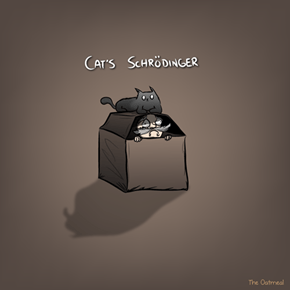 Cat's Schrödinger (by The Oatmeal)