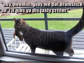 """hey, hoomin.. gibs me dat drumstick an' i'll gibs yu dis tasty critter."""