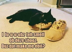 I  lu-u-u-ubz  teh smell ob deze shooz.  Duz dat make me ebil?