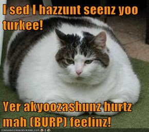 I sed I hazzunt seenz yoo turkee!  Yer akyoozashunz hurtz mah (BURP) feelinz!