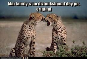Mai family iz no dizfunkshunal dey jus original