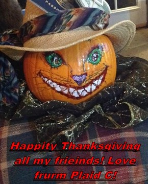 Happity Thanksgiving all my frieinds! Love frurm Plaid C!