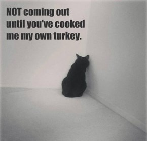 NOT coming out  until you've cooked  me my own turkey.