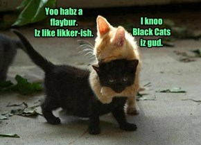 I knoo Black Cats iz gud.