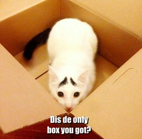 Dis de only box you got?