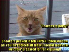 """Heavens to Betsy!"" Snookers peaked in teh KKPS Kitchen window an' couldn't beleeb all teh wunnerful foods dat wer bein' prepared for Fanksgiving!!"