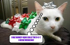 I HAZ BOWZ? KQIK CALLZ THE V-E-T.  I NEEDZ MEDICINE!