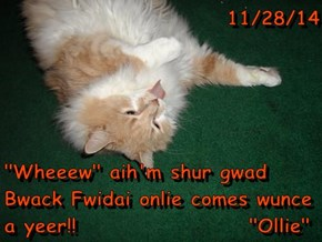 "11/28/14  ""Wheeew"" aih'm shur gwad Bwack Fwidai onlie comes wunce a yeer!!                    ""Ollie"""