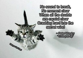 No sound to break,    No moment clear    When all the doubts    are crystal clear    Crashing hard into the    secret wind