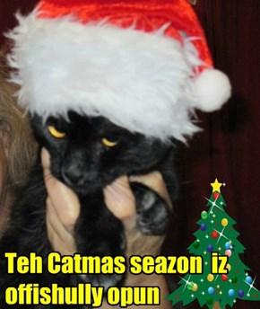 Teh Catmas seazon  iz offishully opun