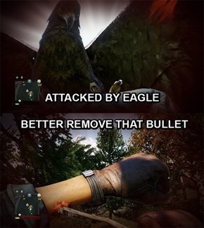 Far Cry 4 Logic