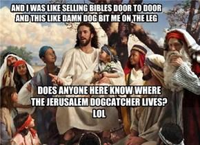 Jerusalem dogcatcher. LOL...