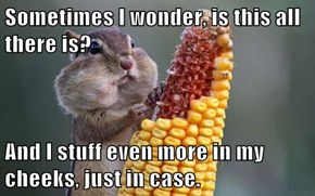 Existential Squirrel is a Realist