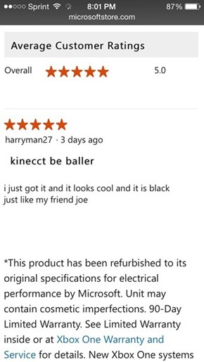 The Only Review You Need to Read Before Getting a Kinect