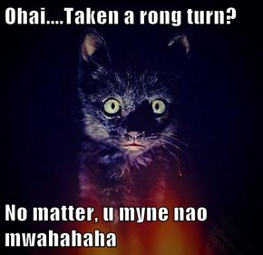 Ohai....Taken a rong turn?  No matter, u myne nao mwahahaha