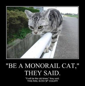 """BE A MONORAIL CAT,"" THEY SAID."
