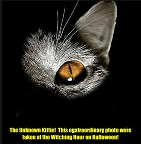 At teh Witching Hour on Halloween, teh KKPS Chapel clock struck 13 times an' lightning danced in teh sky! An' then dis mysterious photo wer taken by a hidden camera Priscilla had put where teh Unknown Kittie once wer seen!