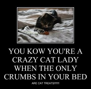YOU KOW YOU'RE A CRAZY CAT LADY WHEN THE ONLY CRUMBS IN YOUR BED
