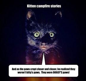 Kitten campfire stories