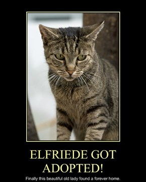 ELFRIEDE GOT ADOPTED!