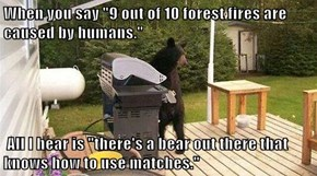 "When you say ""9 out of 10 forest fires are caused by humans.""    All I hear is ""there's a bear out there that knows how to use matches."""