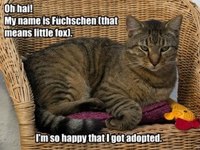 Fuchschen Got Adopted!