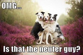 OMG...  Is that the neuter guy?