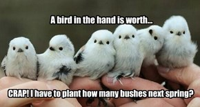 A bird in the hand is worth...