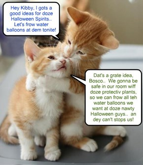 Bosco an' Kibby com up wiff a great plan for Halloween Nite..