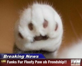 Breaking News - Fanks Fur Floofy Paw ob Frendship!!