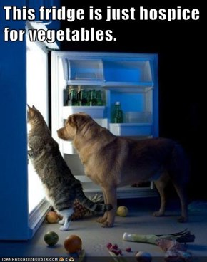 This fridge is just hospice for vegetables.