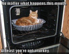 No matter what happens this month,   At least you're not a turkey.