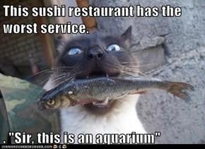 "This sushi restaurant has the worst service.  . ""Sir, this is an aquarium"""