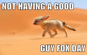 NOT HAVING A GOOD  GUY FOX DAY