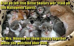 A lot ob teh Ittie Bittie Skolars wer 'fraid ob teh Halloween Spirits  so Mrs. Nonono let them sleeps together while she watched ober dem..