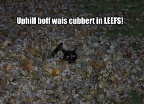 Uphill boff wais cubbert in LEEFS!