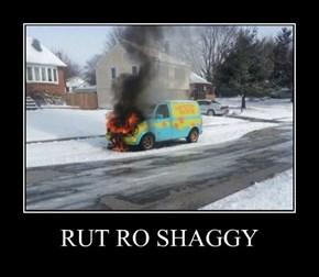 RUT RO SHAGGY