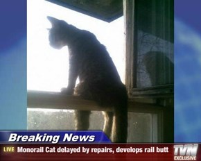 Breaking News - Monorail Cat delayed by repairs, develops rail butt