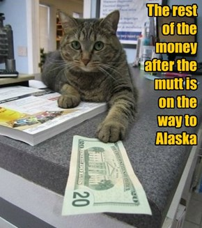 The rest of the money  after the mutt is  on the way to Alaska