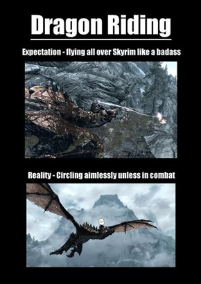Riding Dragons Is Just Fun