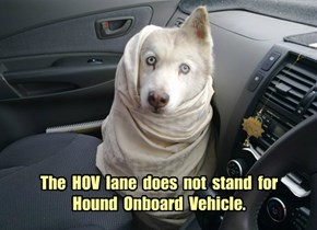 The  HOV  lane  does  not  stand  for Hound  Onboard  Vehicle.