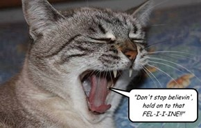 Why you shouldn't let LOLCats sing songs by Journey...
