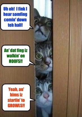 On Halloween Nite, three members of teh Scaredy Cat Club peek out ob dare bedroom door for signs ob Scary Monsters walkin' thru teh hallways ob Kuppykakes Preppy Skool!!