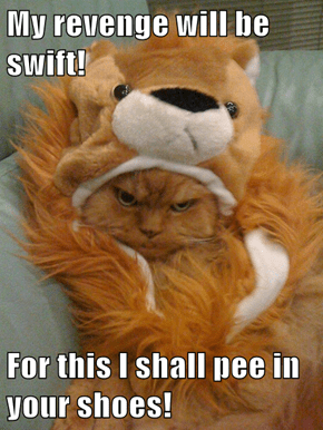My revenge will be swift!  For this I shall pee in your shoes!